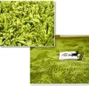 100% Polyester New Design Shaggy Carpet