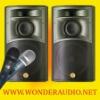 Bandridge Karaoke Speaker System