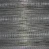 electro galvanized welded wire mesh