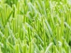 ARTIFICIAL LAWN ,DOUBLE-STEM GRASS