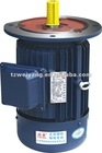 Y series electric motor with flange