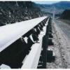 Aramid conveyor belt