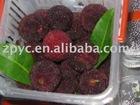 Chinese Fresh waxberry