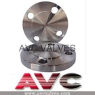 AVC Blind Flange,Forged,STAINLESS STEEL