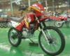 FT150GY-5 Dirt bike