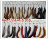 human hair wig color chart for toupee .wig.hair extension