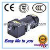 Dc/ac synchronous micro and small gear motor reduction electric motor from 6w to 3.7kw/redution motor
