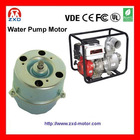 Water Pump Motor-AC100V
