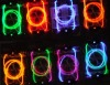 Ultra Bright Lighted Shoelaces