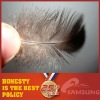 WASHED GREY DUCK FEATHER 3-5CM