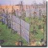 Farming sun shade net( Real factory)
