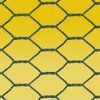 offer chicken wire mesh