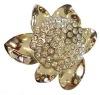 fashion crystal buckle