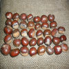 sweet raw orgaic roasted chestnut hot sale