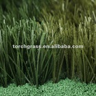 sports grass for outdoor activities