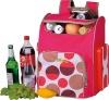 25L red DC 12V portable electric cooler bag HS-250-B01