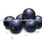 100% Natural acai berry extract powder