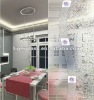 Acid Etched Frosted Float Glass