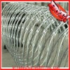 galvanized razor barbed wire(Low Price)