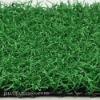 Cheap Golf Grass