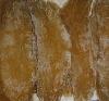 sweet potato slices for dog pet