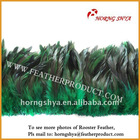 Wholesale Real Feather Material