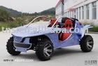 go kart/800cc beach buggy/EEC buggy/800CC EEC BUGGY