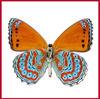 Custom Fake Cartoon butterfly tattoo stickers