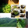 Shou Mei,Chinese white tea,health tea