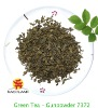 Green Tea Gunpowder 9372
