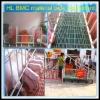 hot sale feeders pig equipment/pig raising equipment/farrowing pig equipment
