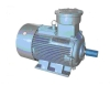 YB2 series explosion-proof asynchronous motor