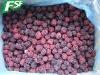 IQF/Frozen Blackberry