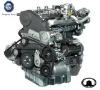 GW4D20 diesel generator engine