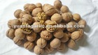 walnut in shell from china