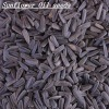 The New Crop2011 Best Black Oil Sunflower Seed