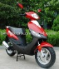50CC New modle scooter