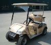 2 passenger golf cart