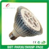 5W LED PAR30 Spotlight