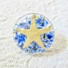 Starfish Shank Button - clear resin button with Starfish inside