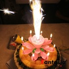 Wholesale Lotus Firework Birthday Candle with Music