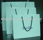 2012 Paper Shopping Bag for clothes