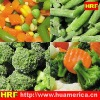 IQFFrozen Mixed Vegetable with broccoli and cauliflower and carrot