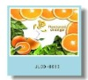 3D fruit design pp placemat for kids