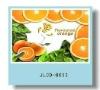 3D fruit design pp placemat for kids